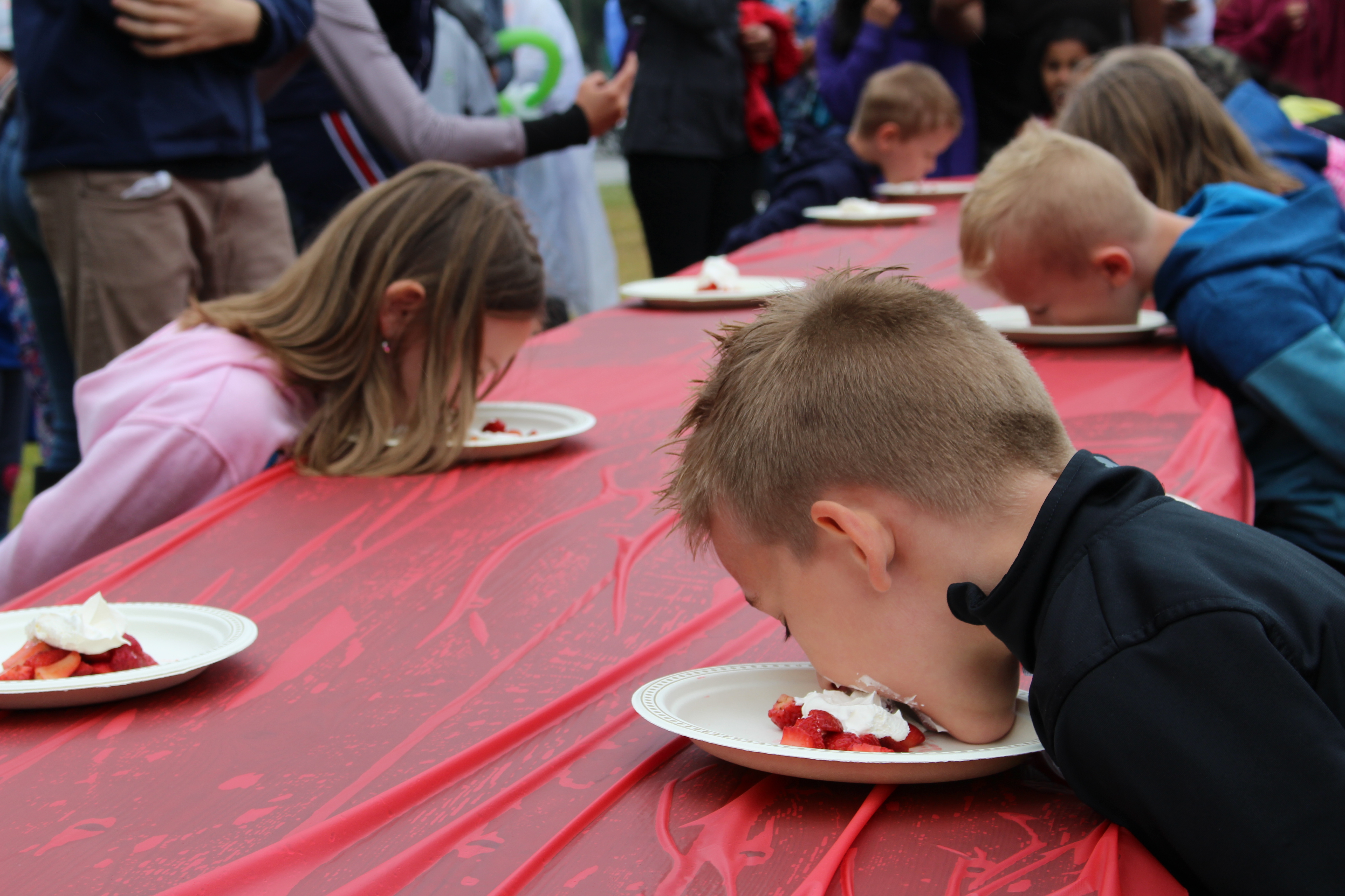 Strawberry Eating Contest at the LaSalle Strawberry Festival