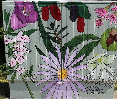 Bell Box Mural - Ojibway Endangered Plant Species